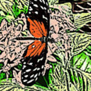 Red Winged Butterfly Poster