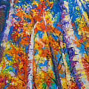 Redemption - Fall Birch And Aspen Poster by Talya Johnson