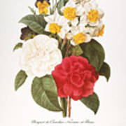 Redoute: Bouquet, 1833 Poster