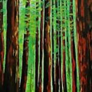 Redwoods Majestic 2 Poster