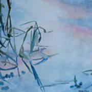 Reeds At Sunset Poster