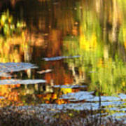 Fall Reflections 5 On Jamaica Pond Poster