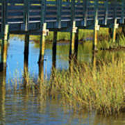 Reflections And Sea Grass Poster