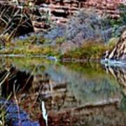 Reflections In Desert River Canyon Poster