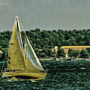 Regatta On Seneca Lake Poster