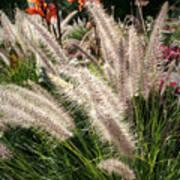 Reptile Garden Plantsi Poster