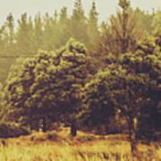 Retro Rural Tasmania Scene Poster