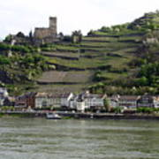 Rhine Castle And Terraced Vineyards Poster