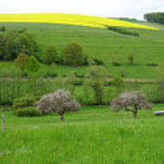 Rhineland-palatinate Summer Meadow With Cherry Trees Poster