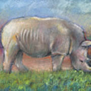 Rhino Poster by Arline Wagner