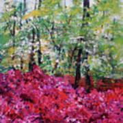 Rhododendron Glade Norfolk Botanical Garden 201821 Poster