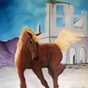 Rhyolite Pony Poster