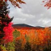 Rich Fall New Hampshire Colors Poster