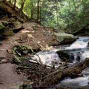 Ricketts Glen Falls 030 Poster