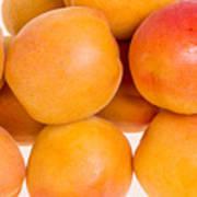 Ripe Apricots  Poster