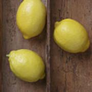 Ripe Lemons In Wooden Tray Poster