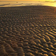 Ripples In The Sand Low Tide Golden Sunset Poster
