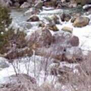 River Boulders Poster