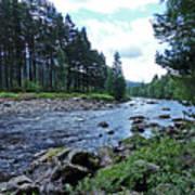 River Dee In Summer Poster