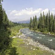 River In Denali National Park Poster