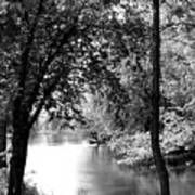 River Passage Through Trees Poster