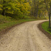 Road In Woods Autumn 3 B Poster
