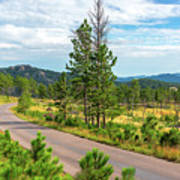 Road Through Custer State Park Poster