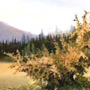 Roadside Apple Tree Poster