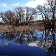 Roadside Pond I Poster