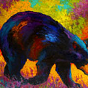 Roaming - Black Bear Poster