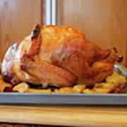 Roast Turkey Poster