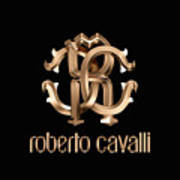 Roberto Cavalli Poster