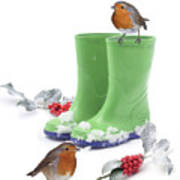 Robins And Green Wellies Poster
