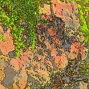 Rock And Shrub Abstract I  Poster