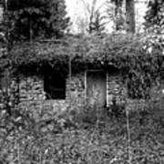 Rock Cabin Black And White Poster
