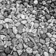 Rocks From Beaches In Black And White Poster