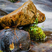 Rocks In The Creek Poster