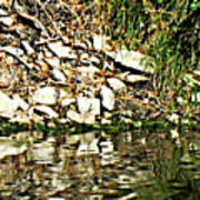 Rocks Reflecting Off Water Poster