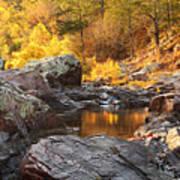 Rocky Creek II On Mill Mountain In The Missouri Ozarks Poster