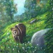 Rocky Mountain Spring Poster