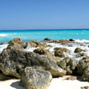 Rocky Shore--cancun Poster
