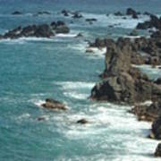 Rocky Shore On St. Kitts Poster