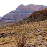 Rocky Slope Grand Canyon Poster