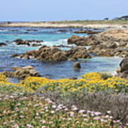 Rocky Surf With Wildflowers Poster