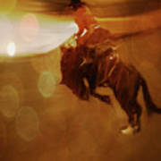 Rodeo Abstract Poster