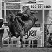 Rodeo Bull Riding 1 Poster
