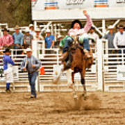 Rodeo Cowboy Riding A Bucking Bronco Poster
