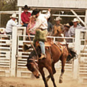 Rodeo Cowboy Riding A Wild Horse Poster