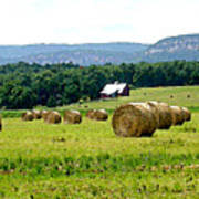 Rolled Bales Poster