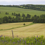Rolling Farmland Stretches Poster